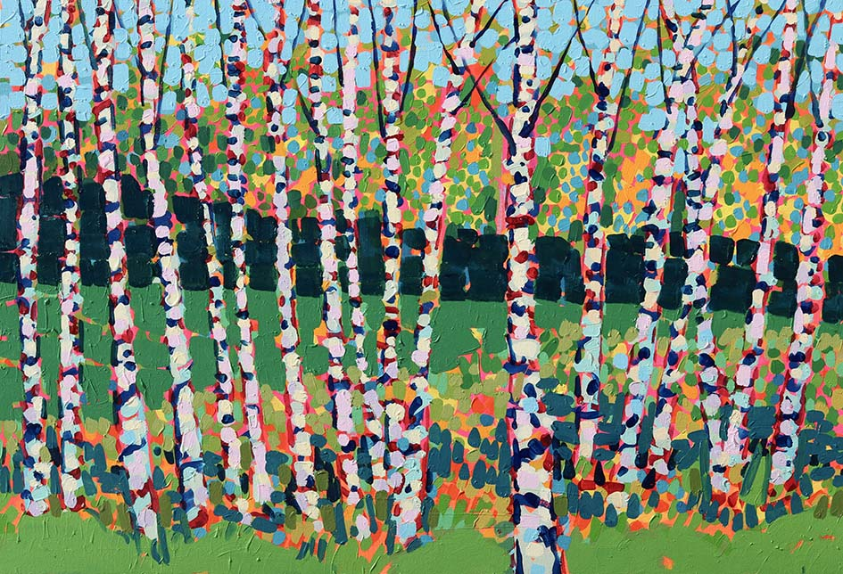 Birch In The Park