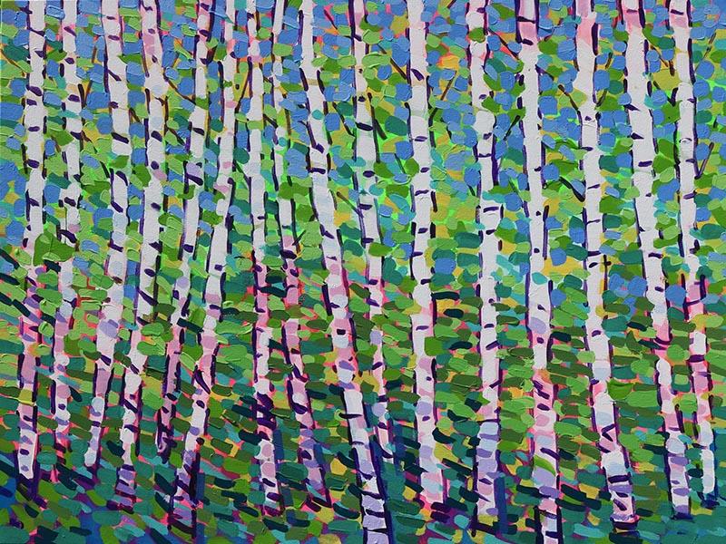 Summer Light Birch Trees